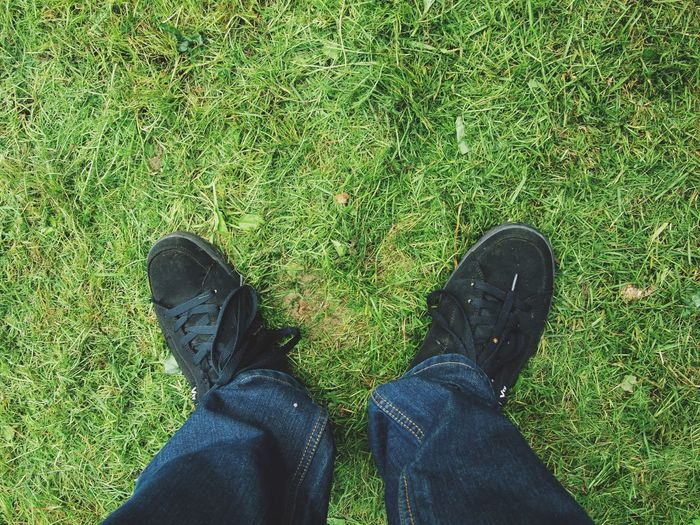 Low section of man standing on grass