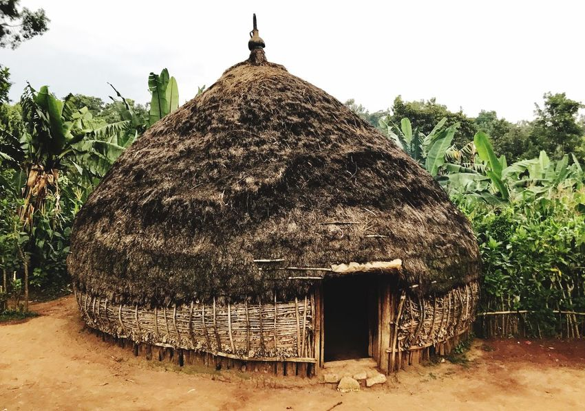 Ethiopia in my eyes Thatched Roof Hut Day Nature Outdoors Tree Built Structure Architecture No People Sky Beauty In Nature Africa The Great Outdoors - 2017 EyeEm Awards The Street Photographer - 2017 EyeEm Awards Ethiopia Ethiopian Photography Ethiopian Photography 🇪🇹