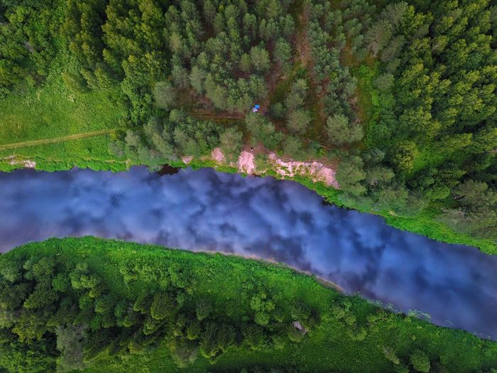 Forrest, river and sky Beauty In Nature Nature Tree Growth Water Green Color Plant Scenics Tranquil Scene Outdoors No People Day Lush Foliage Tranquility Flower Freshness Landscape Grass Russia Looking Down River From Above From Above  Green And Blue Aerial View Sky Reflection Breathing Space The Week On EyeEm