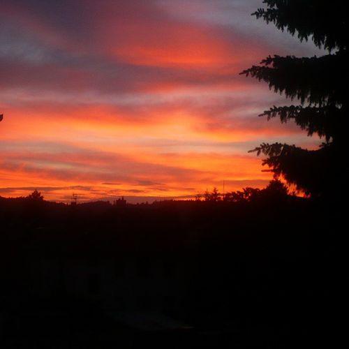 Sunset Nofilter Beautiful Nature weather colors