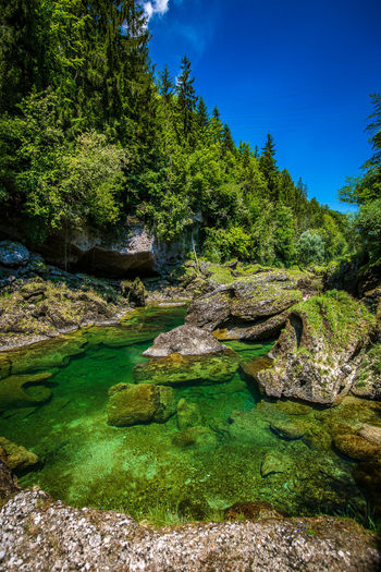 Traunfall Beauty In Nature Day Flowing Water Forest Green Color Growth Land Nature No People Non-urban Scene Oberösterreich Outdoors Plant Rock Rock - Object Scenics - Nature Sky Solid Tranquil Scene Tranquility Tree Upperaustria Water