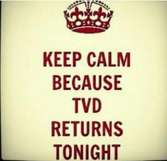 <3 <3 Love TVD100