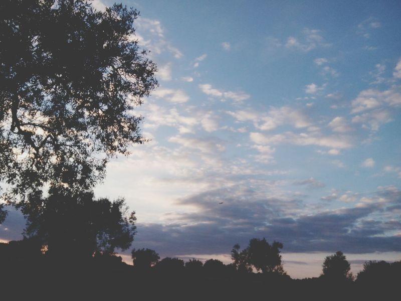 Zitoun Sunset Nature Relaxing