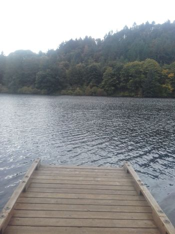 Dock Water Outdoors Nature Tranquil SceneForest Reflection Relaxation Scenics No People Jump! Beauty In Nature