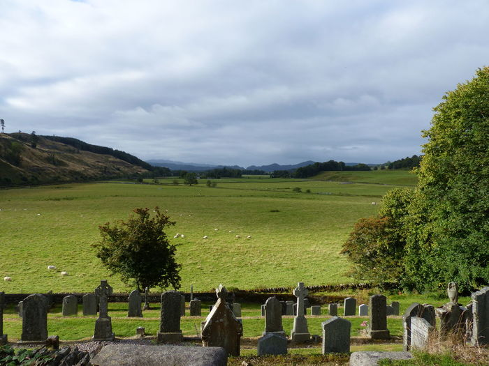 Agriculture Beauty In Nature Cloud - Sky Day Grass Graveyard Beauty Green Color Growth Landscape Nature No People Outdoors R.I.P. Scotland 💕 Sky Standing Stones Tranquil Scene Tranquility Tree