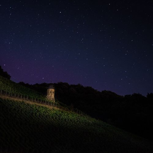Vineyard against star field