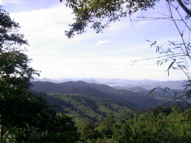 พุเตย Freedom Vistas Landscape Nature Flora Forest Mountain Tree Flying Adventure Sky No People High Outdoors Day Range