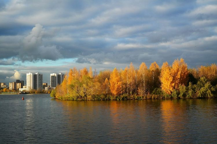 Moscow river. Autumn view Autumn Colors City The Week On EyeEm Architecture Autumn Beauty In Nature Birch Trees Building Exterior Buildings Built Structure Change City Cloud - Sky Day Foliage, Vegetation, Plants, Green, Leaves, Leafage, Undergrowth, Underbrush, Plant Life, Flora Lake Nature No People Outdoors Riverbank Scenics Sky Tree Water Waterfront