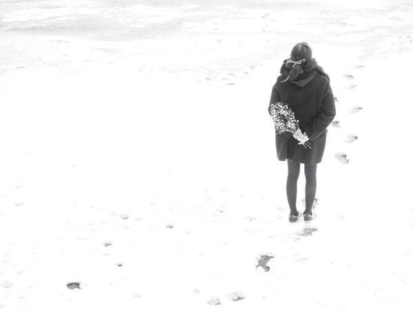 White Flower Flowers, Nature And Beauty Flowers,Plants & Garden Flower Collection Flowers Flower Kasumi Grass White Album White Ribon Snow ❄ Snow Snow Day Girl Monochrome Monochromatic Monoart Mono Monotone Monochrome _ Collection Lonely