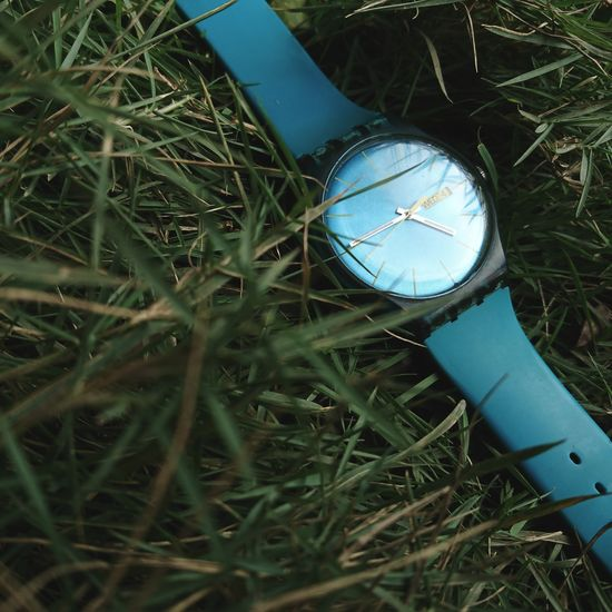 Sony Xperia Xz Takenwithxperia Shotbyxperia Itsme_itsXperia Mobilephotography Close Up Close-up Still Life Outdoor Green Grass Watch Swatch