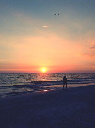 Sunset Silhouettes Sunset Beach Nature