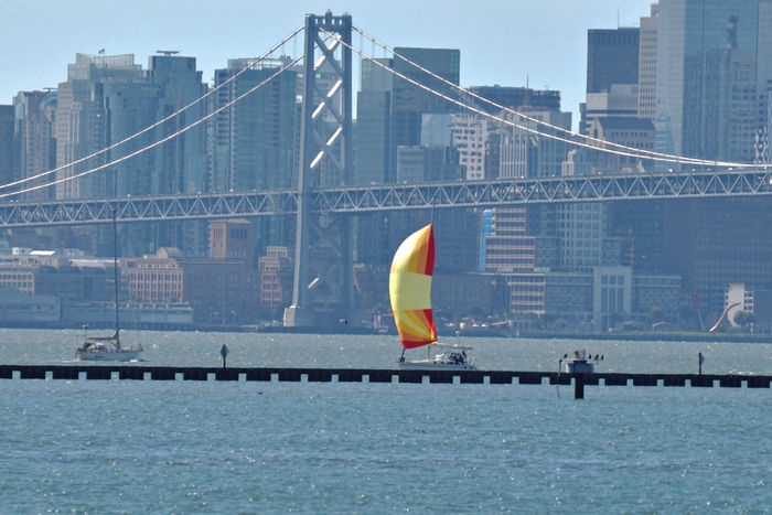 Sailboat @ Middle Harbor 2 San Francisco Skyline San Francisco Bay Bay Bridge San Francisco : Home Port Of Eros Background : Cupid's Span Sailboats Colorful Sails