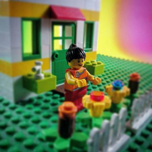 Home sweet home... Tcb_annaroses Toyartistry Wheretoysdwell Toycrewbuddies Infigs Toycommunity Toyboners Toypops2 Ata_dreadnoughts Toyunion Toydiscovery Toygroup_alliance Justanothertoygroup LEGO ToygraphyID Epictoyart Toyplanet Jj_toys Zifu_toys Toptoyphotos Articulatedcomicbookart Tgif_toys Actionfigureattack Toysphotogram Rebeltoysclub toysyn toysaremydrug anarchyalliance toyhumor btstp_id