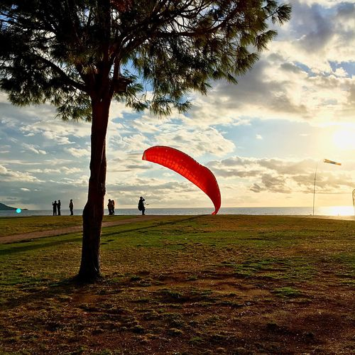Tree Leisure Activity Sky Sport Parachute Grass Cloud - Sky Outdoors Real People Day Nature Adventure Full Length Palm Tree One Person Extreme Sports Beauty In Nature Paragliding People