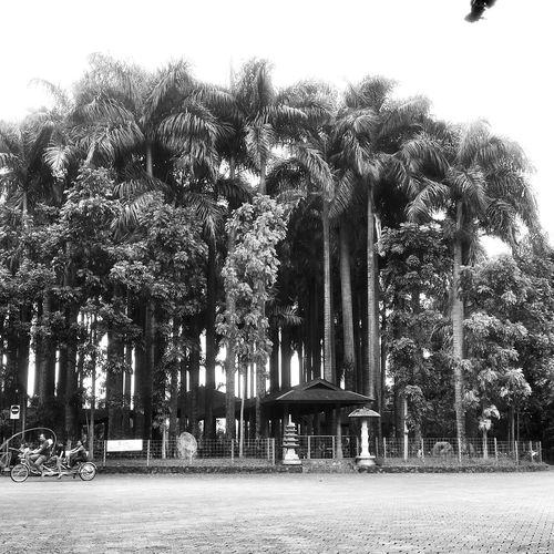 Monochrome Popular Photos Blackandwhite Photography Bogor