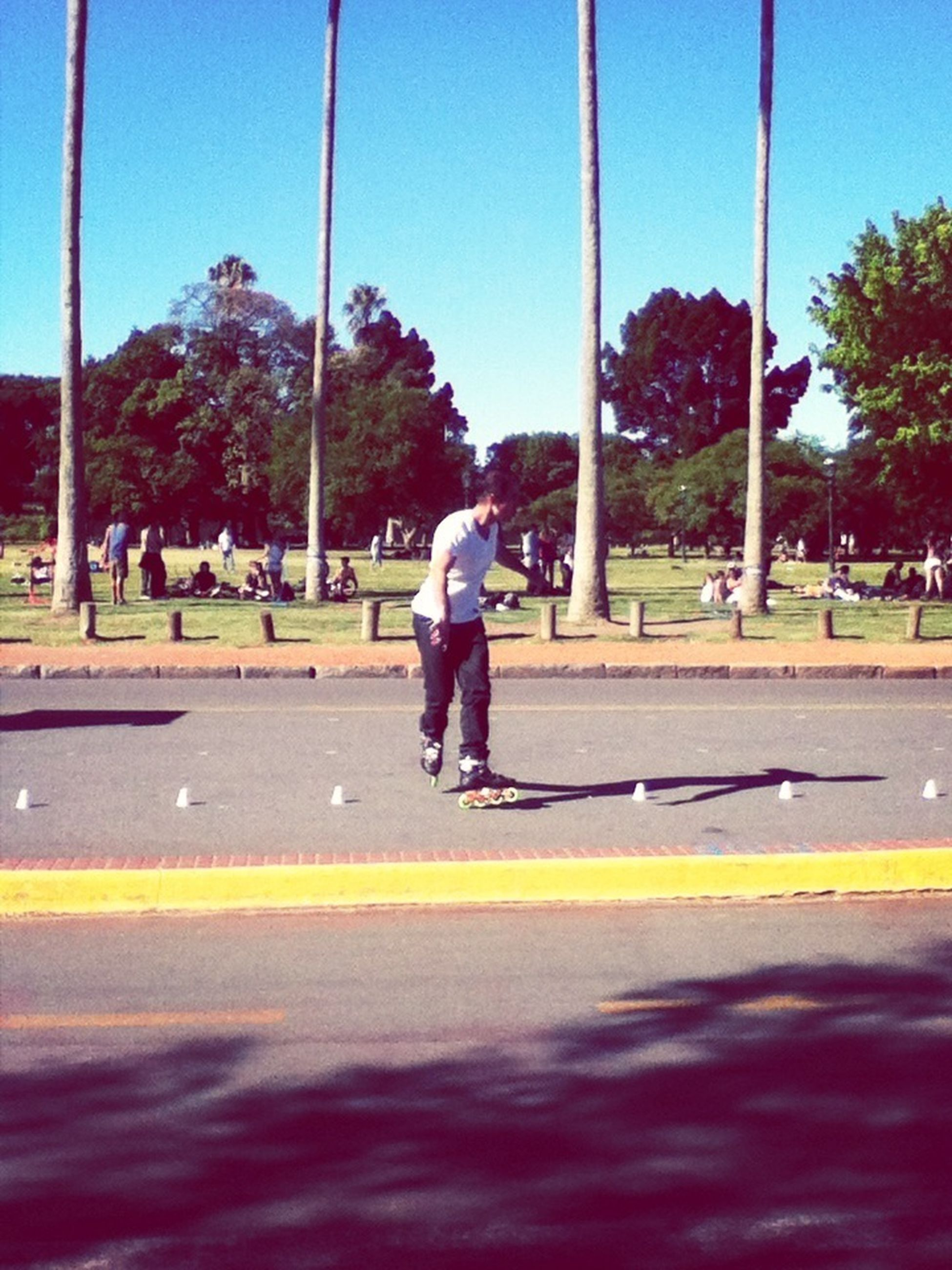 full length, lifestyles, tree, leisure activity, street, walking, road, rear view, childhood, casual clothing, park - man made space, girls, boys, person, clear sky, men, shadow, day