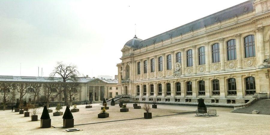 Museum Museum Of Natural History Paris Paris ❤ Paris, France  Visiting Park Outside Garden Architecture