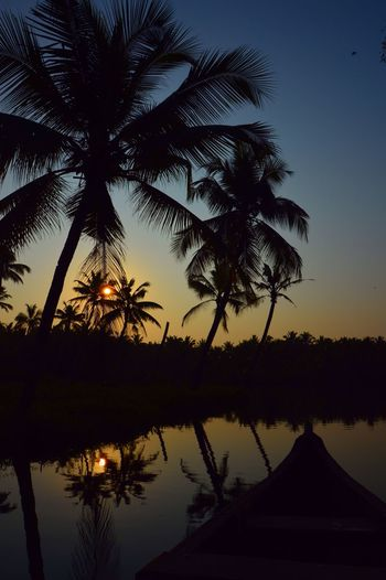 India Beauty In Nature Boat Jungle Kerala Nature Palm Tree Reflection River Sunrise Tranquility Tree Tropical Water