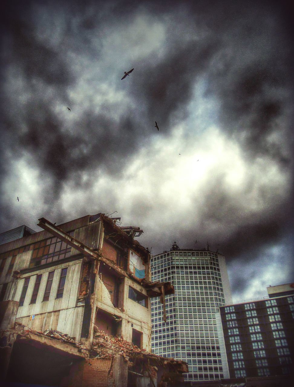 architecture, building exterior, sky, built structure, cloud - sky, flying, city, low angle view, skyscraper, city life, urban, bird, storm cloud, outdoors, no people, modern, cityscape, day