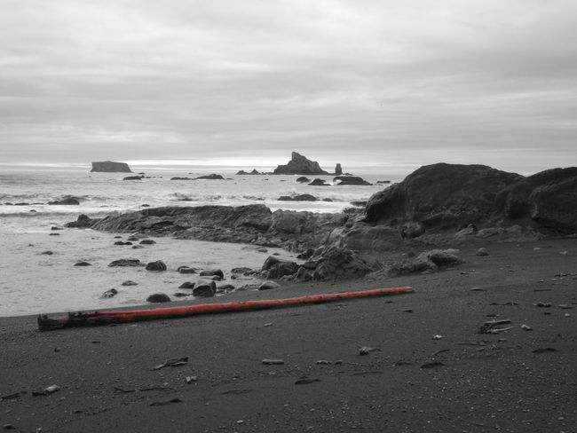 Beach Red Cedar Red Logs Tree Tronc Grey Sky Walking Alone... Sea Pacific Ocean Nature Photography