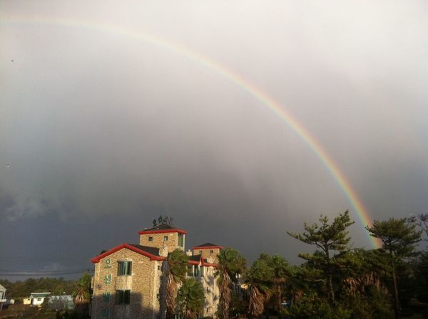 rainbow in Jeju island Rainbow Tree Architecture Building Exterior Double Rainbow No People Built Structure