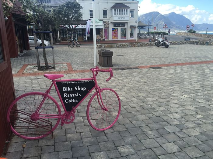 #Cycling in #Hermanus Text Communication Building Exterior Western Script City Architecture Built Structure Sign Day Street Information Transportation Information Sign Bicycle Outdoors