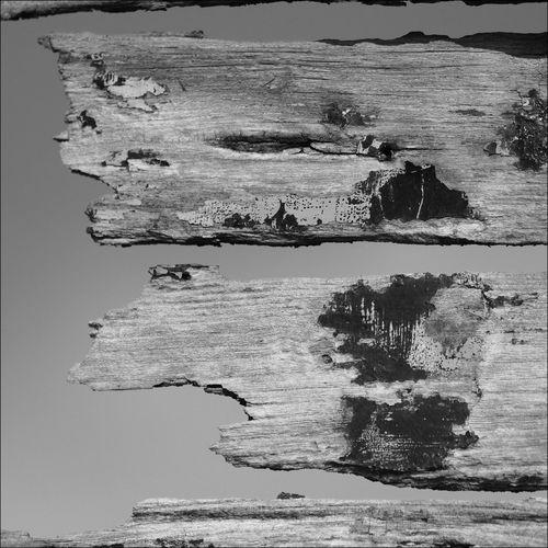 Detail Of Old Fishing Boat Splinters