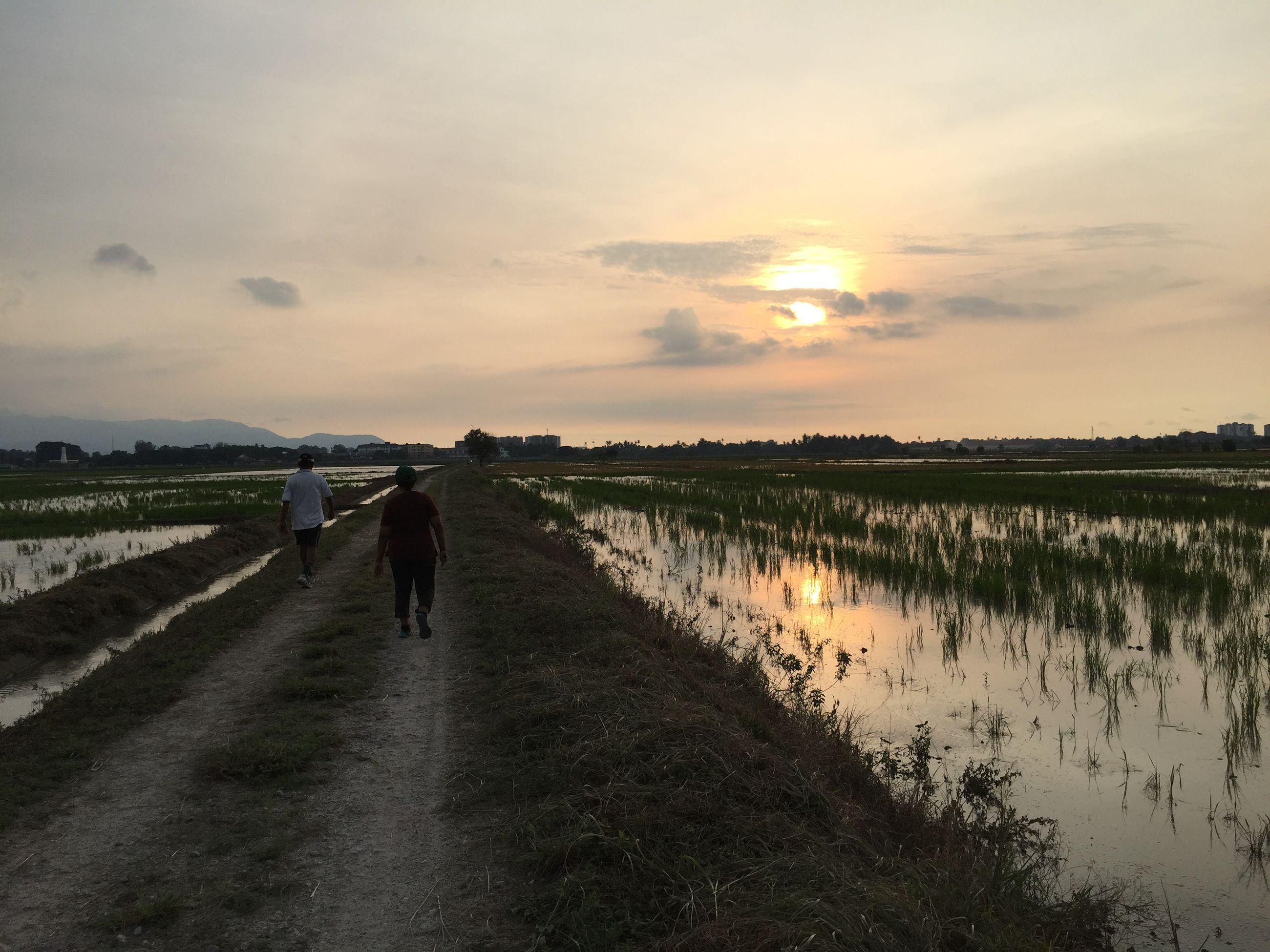 sky, walking, field, full length, the way forward, lifestyles, rear view, sunset, grass, leisure activity, cloud - sky, men, tranquility, tranquil scene, landscape, dirt road, nature, scenics