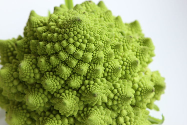 Close-up of romanesco broccoli against white background