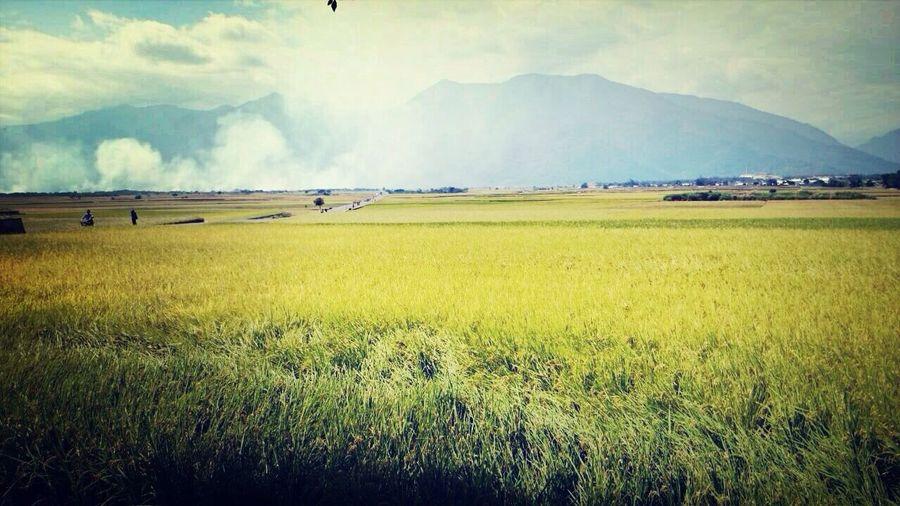 當我們認為自己一無所有的時候,不要忘記了還有一個高貴的靈魂! Relaxing Taiwan Enjoying Life EyeEm