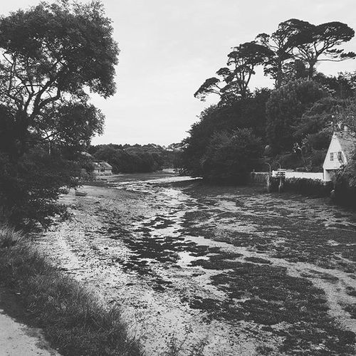 Helford Helfordriver Tide Country countryside cornwall summer blackandwhite rural boathouse