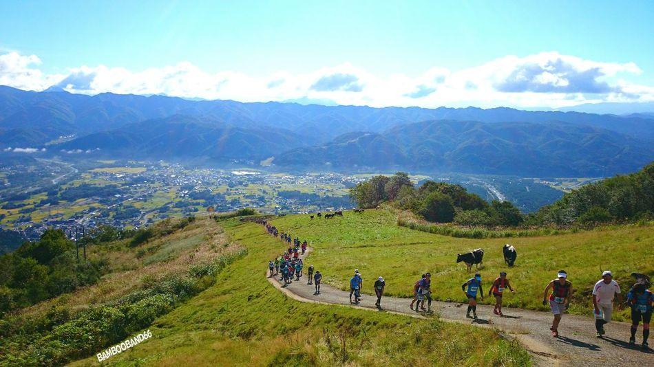 こんなゲレンデの荷揚げ道も今年はいい天気で楽しめた~!(*^^*) 放牧のウシ君デカかったな~!(*≧∀≦*) Enjoying Life Trail Running Mountain View Good Memory