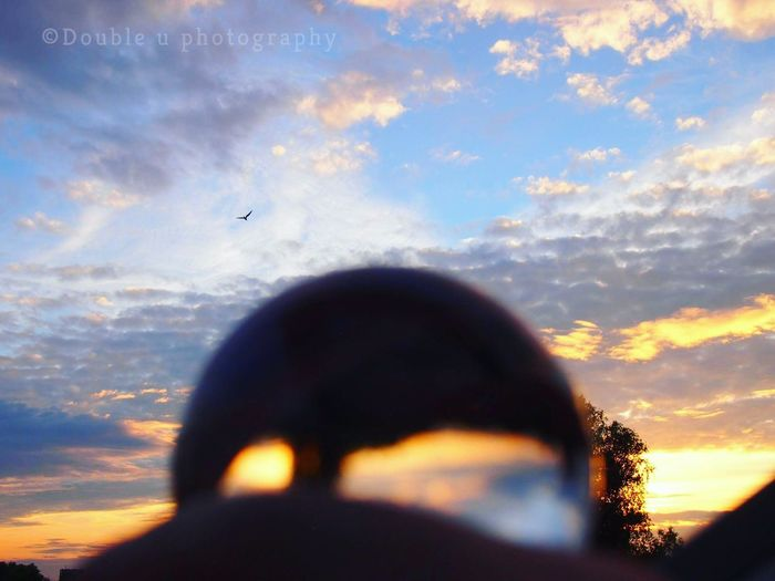 Cloud - Sky Sunset Sky Flying Outdoors Nature Bird Animal Themes Silhouette Travel Destinations Glassball Olympus Camera Crystal Ball Close-up Low Angle View