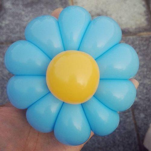 意外と難しい バルーンアート 10枚花 花びらは260一本 バルーン 風船 細長い 花 Balloon Balloonart Flower ブルー Blue Oneballoon チャレンジしてみてね まずは8枚花から 作品 公園 自然光 お気に入り 色 Color 以前福岡に住んでました この写真は福岡