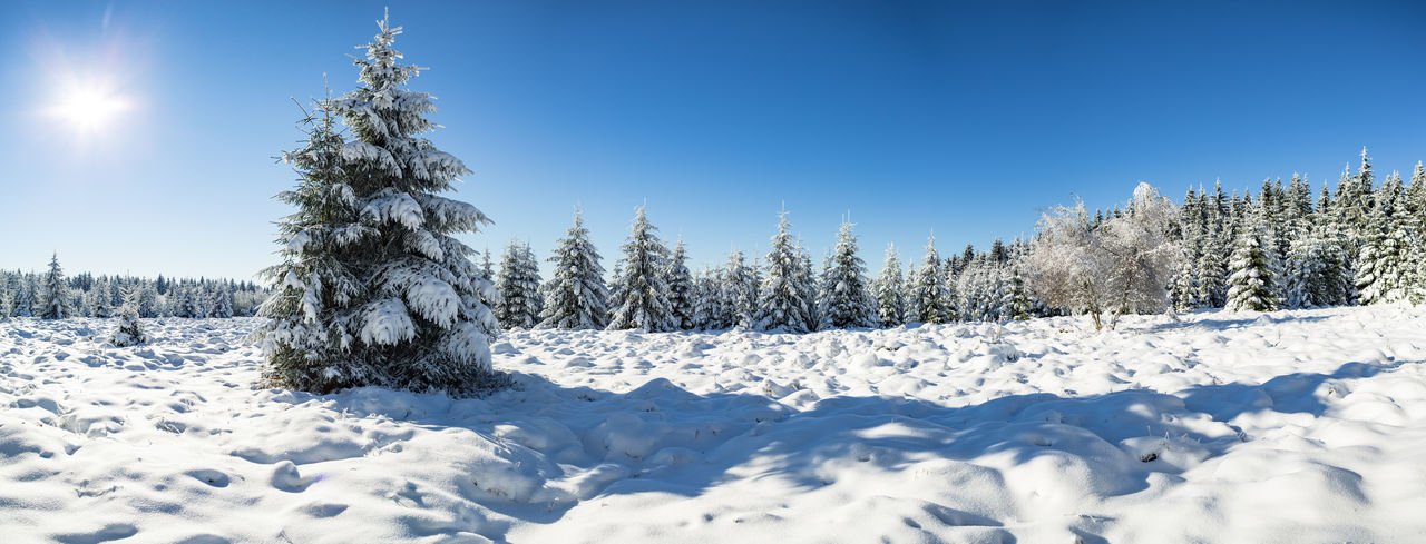 Panoramic Shot Of Trees On Snow Covered Field Against Clear Blue Sky