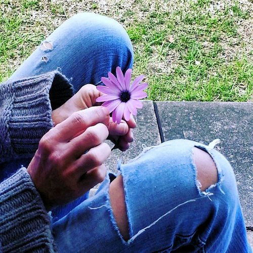 loves me,loves me not Daisy EyeEm Best Shots Life Love Casual Clothing Day Denim Emotion Feelings Flower Freshness Grass Holding Jeans Leisure Activity Lifestyles Loves Me, Loves Me Not Nature One Person Outdoors Personal Perspective Plant Purple Real People Ripped Jeans