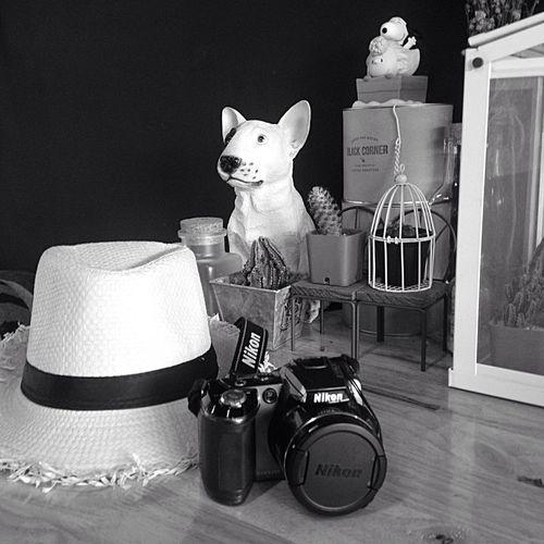 Slow Life Taking Photos Hanging Out Enjoying Life Blackandwhite Happiness (null) Happy Day Nikon Camera Adventure Club