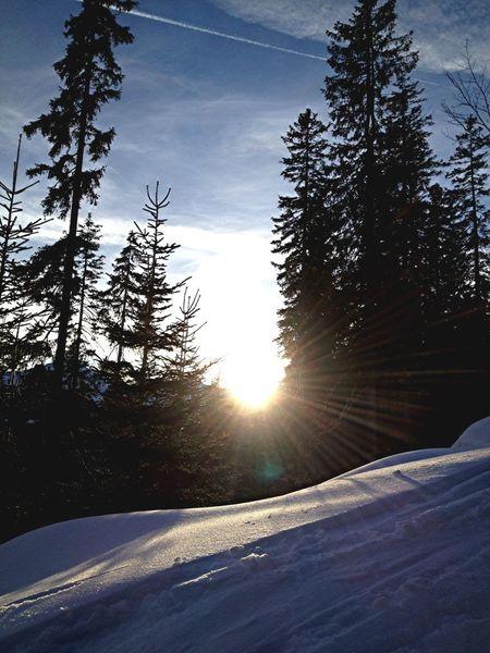 Skylining Nature Ifen Winter Mountain Snow Snowboarding