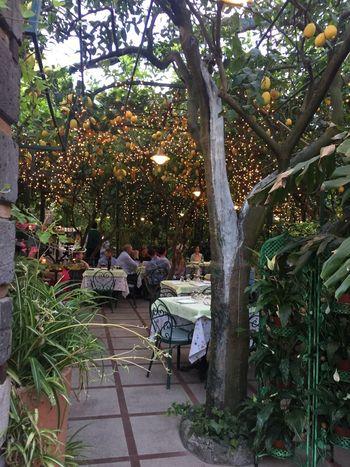 Dinner with lemons Italy