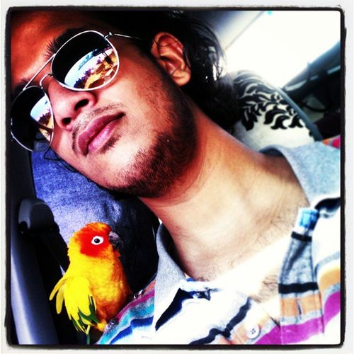Playing With The Animals Car Selfies Pets Beautiful Animals  Sun Conure :)