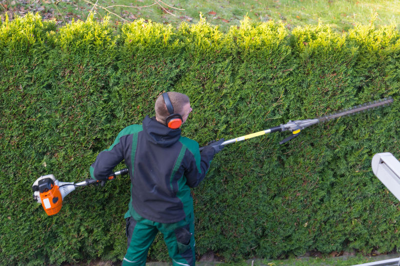 Gardener cuts a hedge with a gasoline hedge trimmer. Shaping a wall of thujas Plant Men One Person Grass Nature Green Color Leisure Activity Childhood Day Holding Males  Growth Child Boys Casual Clothing Land Golf Club Three Quarter Length #NotYourCliche Love Letter Humanity Meets Technology