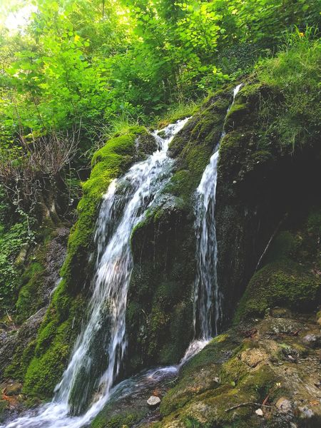 Water Waterfall Beauty In Nature Forest Green Color No People Nature Tranquility