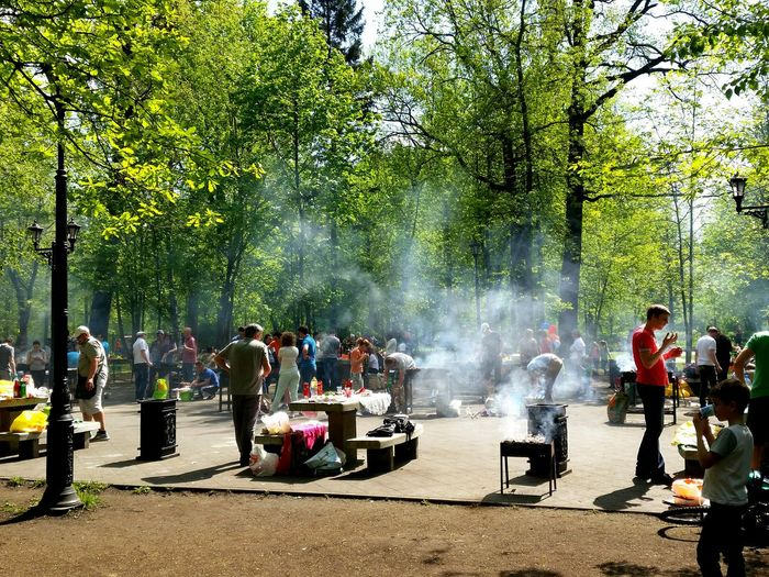 Park bbq People Together People Trees Smoke Food Frying BBQ BBQ Time Springtime Park