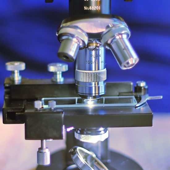 Microscope Oil Immersion OilImmersion Objective