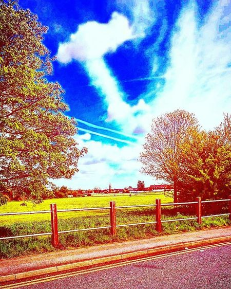 Sky hamma xxxxxxx Nefilian Xxxxxxx Hammer Time Sky And Clouds Trees Street Photography Digital Art X