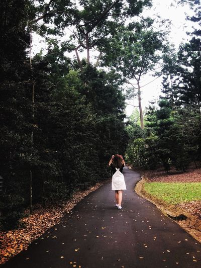 Rear view of woman walking on road against trees