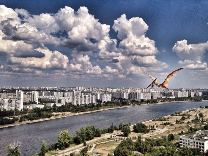 Drawing Hello World Moscow pterodactyloidea