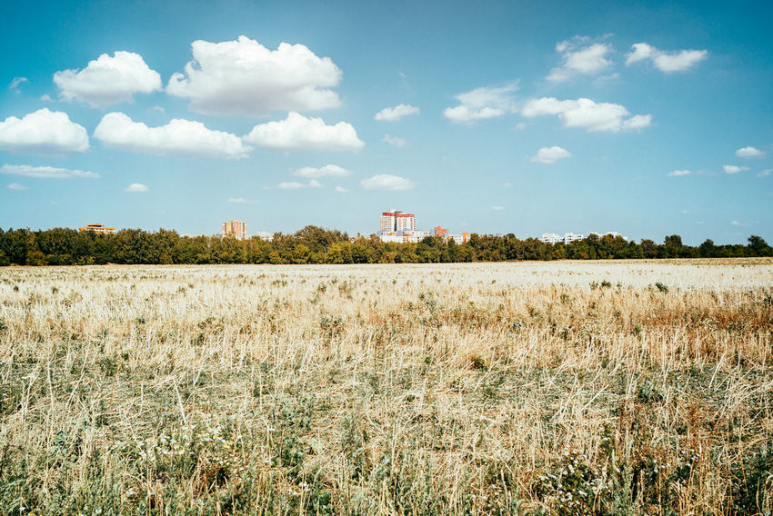 View to Berlin from Brandenburg Agriculture Field The Great Outdoors - 2018 EyeEm Awards Agricultural Field Architecture Arid Climate Arid Landscape Berliner Ansichten Building Exterior Built Structure Cloud - Sky Day Environment Field Grass Growth Land Landscape Nature Outdoors Plant Rural Scene Sky Tranquil Scene Tranquility