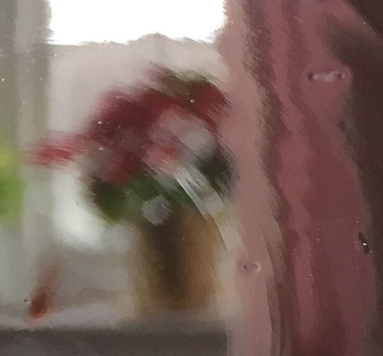 Plant on window through glass/Expressionism/Impressionism