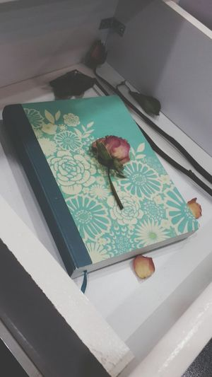 دفتر ذكرياتي ♡